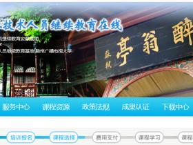 2020年滁州专业技术人员继续教育在线挂机软件