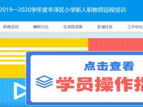 2019一2020学年度丰泽区小学新入职教师远程培训网站入口