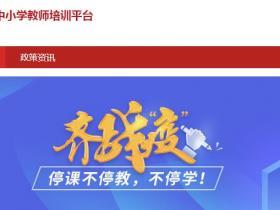 河源市中小学教师培训平台学习代学_挂机软件