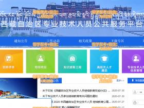 西藏专业技术公需课代学 - 西藏专业技术人员继续教育挂机软件
