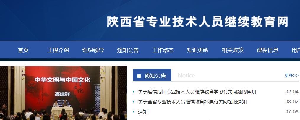 陕西省专业技术人员继续教育网代学_挂机软件